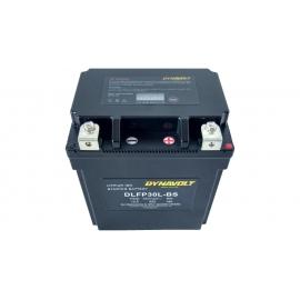 Dynavolt DLFP30L-BS Lithium Battery